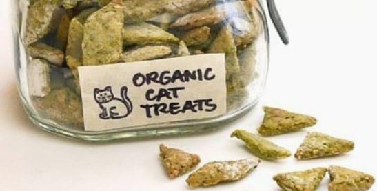 Kitty Cat Treats – Salmon Sweet Potato Treats